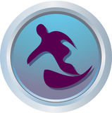 Logotipo do inverno - snowboard Imagem de Stock Royalty Free