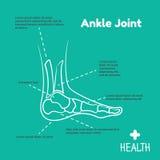 Logotipo do molde para a junção de tornozelo Imagem de Stock Royalty Free