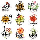 Logotipo do outono, ilustração Imagens de Stock