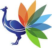 Logotipo do pavão Fotografia de Stock