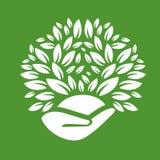 Logotipo do produto de Eco Ilustração Stock
