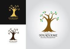 Logotipo do projeto da folha da árvore ilustração do vetor