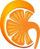 Logotipo do rim Imagens de Stock