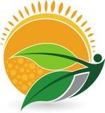 Logotipo do ser humano da folha do verão Foto de Stock