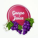 Logotipo do suco de uva ilustração stock