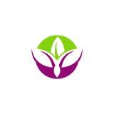 Logotipo do sumário dos lótus da beleza Foto de Stock Royalty Free