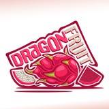 Logotipo Dragon Fruit do vetor ilustração do vetor