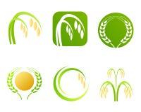 Logotipo e símbolos da indústria do arroz Imagem de Stock