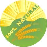 Logotipo - el 100% natural Imagenes de archivo