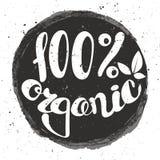 Logotipo el 100% orgánico con las hojas Imagen de archivo