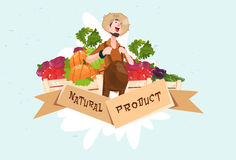 Logotipo fresco da exploração agrícola de Eco do produto de Vegetable Harvest Natural do fazendeiro ilustração stock