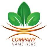 Logotipo fresco da folha Imagens de Stock Royalty Free