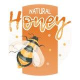 Logotipo natural do mel com zangão da abelha Foto de Stock Royalty Free