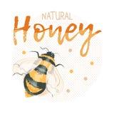 Logotipo natural do mel com zangão da abelha Imagem de Stock Royalty Free