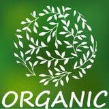 Logotipo orgánico o natural para los productos stock de ilustración