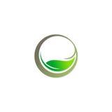 Logotipo orgânico da folha verde da beleza Foto de Stock Royalty Free