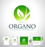 Logotipo orgânico do vetor da folha ilustração stock