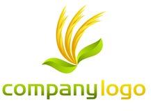 Logotipo orgânico do vetor - folhas e flamas ilustração do vetor