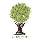 Logotipo sob a forma de uma oliveira estilizado Fotos de Stock Royalty Free