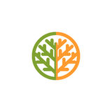 Logotipo verde, anaranjado abstracto aislado del árbol del color Logotipo natural del elemento Hojas e icono del tronco Muestra d Fotografía de archivo libre de regalías