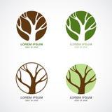 Logotipo verde da árvore Fotos de Stock