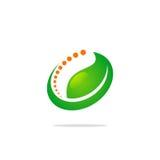 Logotipo verde da folha da beleza Fotografia de Stock