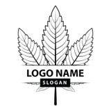 Logotipo verde da folha do cannabis ilustração royalty free