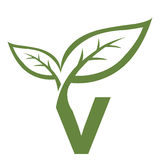 Logotipo verde de la inicial V del vector Fotografía de archivo