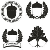 Logotipos com a imagem de uma bolota ilustração do vetor