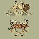 Logotipos del león y del tigre, emblemas o insignias con los animales salvajes y banderas o cintas en el vintage, viejo estilo re Foto de archivo