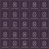 Logotipos do vetor do quadro do formulário dos ornamento florais ajustados ilustração do vetor