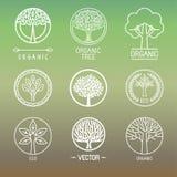 Logotipos e insignias del árbol del vector Imagen de archivo libre de regalías