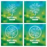 Logotipos naturais orgânicos Fotografia de Stock