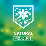 Logotipos naturales orgánicos Imágenes de archivo libres de regalías