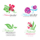 Logotipos naturales orgánicos Foto de archivo