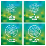 Logotipos naturales orgánicos Fotografía de archivo