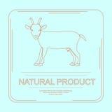 Logotype del prodotto naturale Fotografia Stock Libera da Diritti