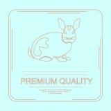 Logotype 263 di qualità premio Immagini Stock Libere da Diritti