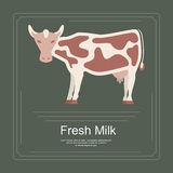 238 Logotype of fresh milk. Logotype of fresh milk with cow in flat design. Perfect organic farm products banner or flyer. Vector illustration. eps 10 Royalty Free Stock Images