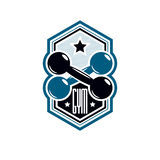 Logotype per la palestra pesante di sport di forma fisica o della palestra, annata Immagine Stock Libera da Diritti