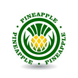 Logotype rond simple avec le symbole d'ananas Images stock