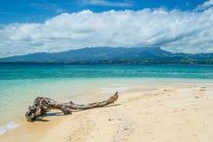 Logował się wyspy tropikalną plażę zdjęcia royalty free