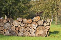 Logpile Stock Photo