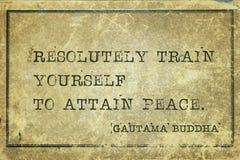 Logre la paz Buda imagen de archivo libre de regalías
