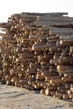 Logs. Forest industry log pile Stock Photo