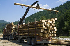 Logs. Working crane in a forest building a stack of logs royalty free stock image