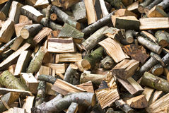 Logs. Freshly felled logs on a pile Royalty Free Stock Photo