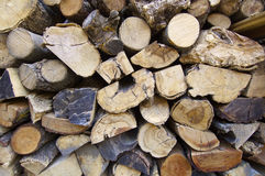 Logs. Trunks of trees cut for firewood Stock Photography