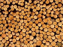 Free Logs Stock Images - 191204