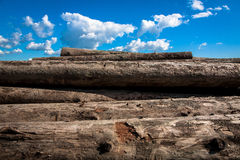 logs photos stock